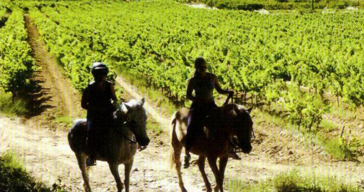 cheval durable Uzège